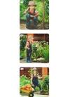 Set 3 Puzzles Progresivos Vida de una Planta