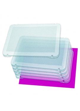 Pegs 6 Platten, Transparent